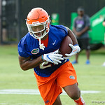Florida Gators running back Lamical Perine as the Gators run through practice drills during the Gators second fall practice of the 2017 season.  August 4th, 2017.  Gator Country photo by David Bowie.