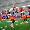 University of Florida Gators Football Spring Practice 2017