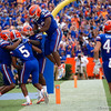 University of Florida Gators 2017 Tennessee Volunteers