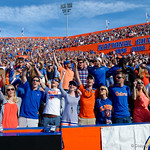 Gators fans cheer on during the second half in which the Gators lost 38-22 to the Florida State Seminoles at  Ben Hill Griffin Stadium in Gainesville, Florida. November 25th, 2017.  Gator Country photo by David Bowie.