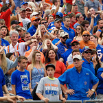 Florida Gtaors fans react after University of Florida Gators tight end DeAndre Goolsby dropped a touchdown catch during the second half as the Gators lose to 42-7 to the Georgia Bulldogs at EverBank Field in Jacksonville, Florida.  October 28th, 2017.  Gator Country photo by David Bowie.