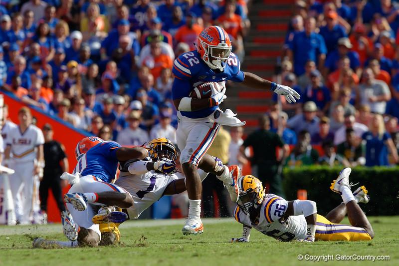 University of Florida Gators 2017 LSU Tigers