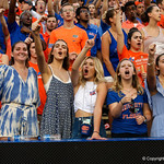 Fans cheer on during the second half as the Florida Gators lose on homecoming to the  LSU Tigers 17-16 at Ben Hill Griffin Stadium in Gainesville, Florida. October 7th, 2017.  Gator Country photo by David Bowie.