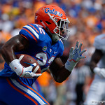 University of Florida Gators running back Lamical Perine rushing during the first half as the Florida Gators defeat tne Tennessee Volunteers 26-20 at Ben Hill Griffin Stadium in Gainesville, Florida. September 16th, 2017.  Gator Country photo by David Bowie.