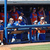 University of Florida Gators Softball Missouri Tigers 2017
