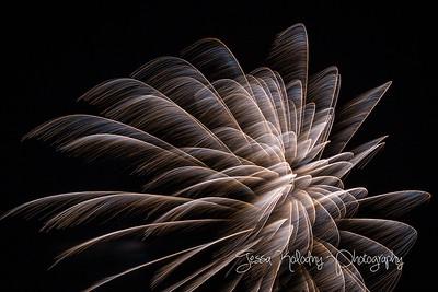 2017 Fireworks-4504