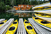 Snug Harbor Resort (San Juan Island) and Crystal Seas kayaks