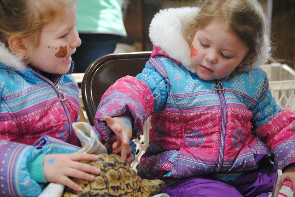 . Leah McDonald - Oneida Daily Dispatch Kenzlie Funari, 5, left, and Lillian Glynn, 2, pet Big Mac the tortoise at the Winter Hibernation Festival at the Great Swamp Conservancy in Canastota, N.Y., on Saturday, Feb. 11, 2017.