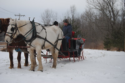 Leah McDonald - Oneida Daily Dispatch Horse-drawn sleigh rides at the Winter Hibernation Festival at the Great Swamp Conservancy in Canastota, N.Y., on Saturday, Feb. 11, 2017.