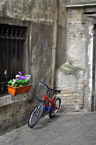 Ven 10009a - Simplicity - orig plus flower, bike, background v2 small