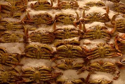 Today's Crab Catch