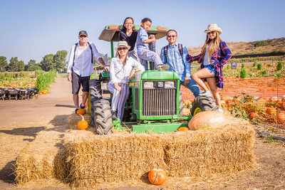 Tanaka Farms Pumpkin Patch:  October 9, 2017