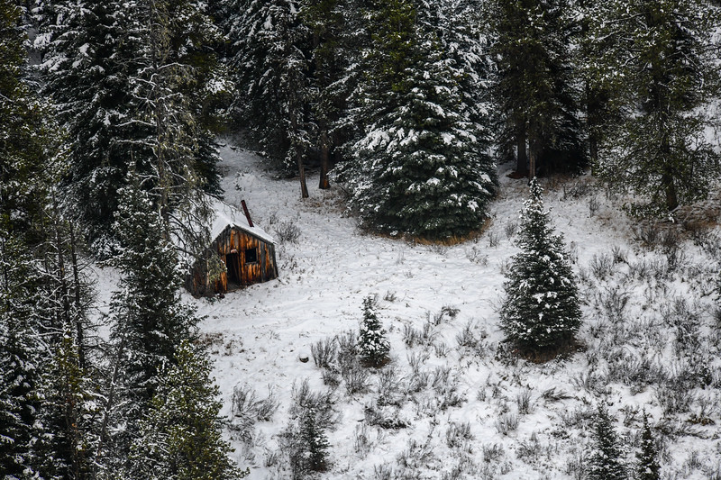 This old cabin sits in Williams Creek area...we took these on our flyby Nov. 7.