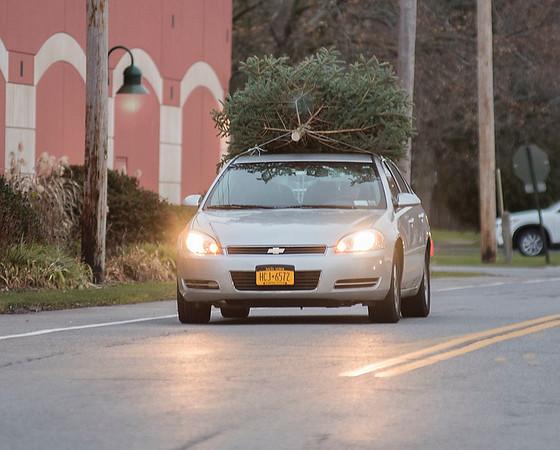171207 Christmas Tree 4