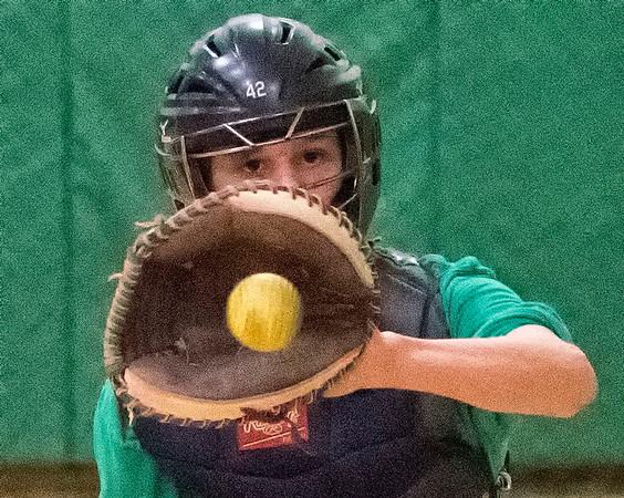 170406 LP Baseball 2