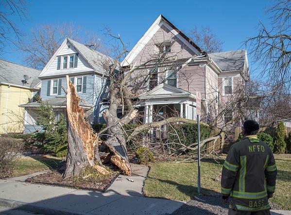 170308 Wind Damage 8