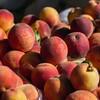 170909 Peach Festival Parade 16