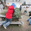 171207 Christmas Tree 2