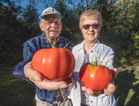 171005 Enterprise Tomatos 2