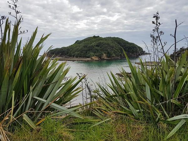 2017 Goat Island Science Trip