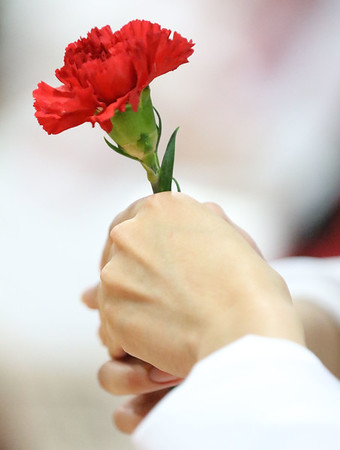 JAY YOUNG | THE GOSHEN NEWS<br /> Goshen High School senior holds onto a red carnation flower during the 2017 commencement ceremony Sunday afternoon.
