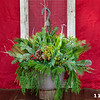 "#11 12"" Hanging Basket"