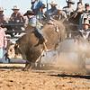 Hcreek rodeo 089202017_1331