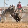 Hcreek rodeo 089202017_1266