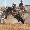 Hcreek rodeo 089202017_1263