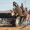 Hcreek rodeo 089202017_1339