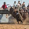 Hcreek rodeo 089202017_1241
