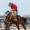 Hcreek rodeo 089202017_0029