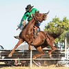 Hcreek rodeo 089202017_1215 copy_01