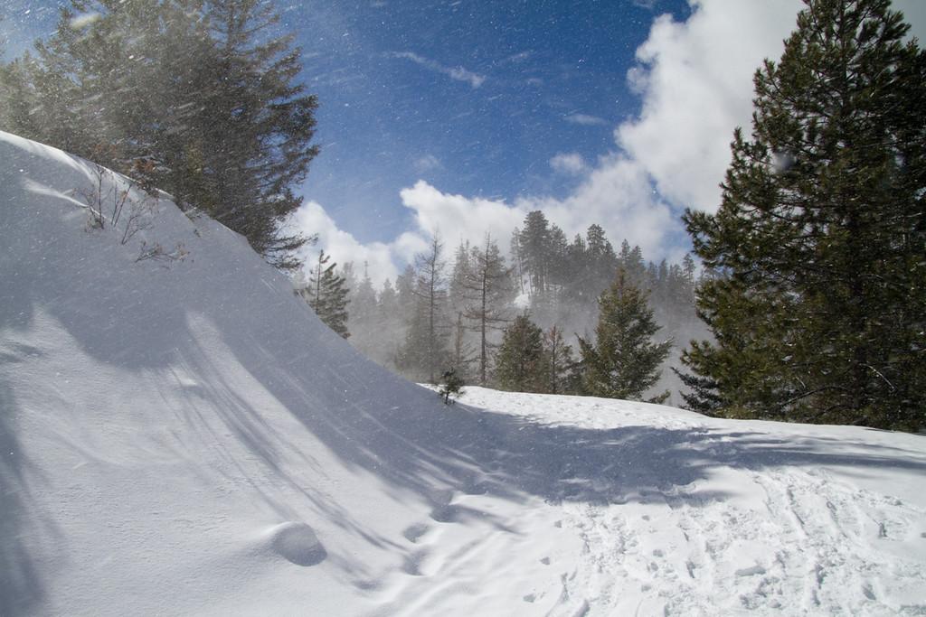 Wenatchee Ridge Trail<br /> Blewett Pass, Washington