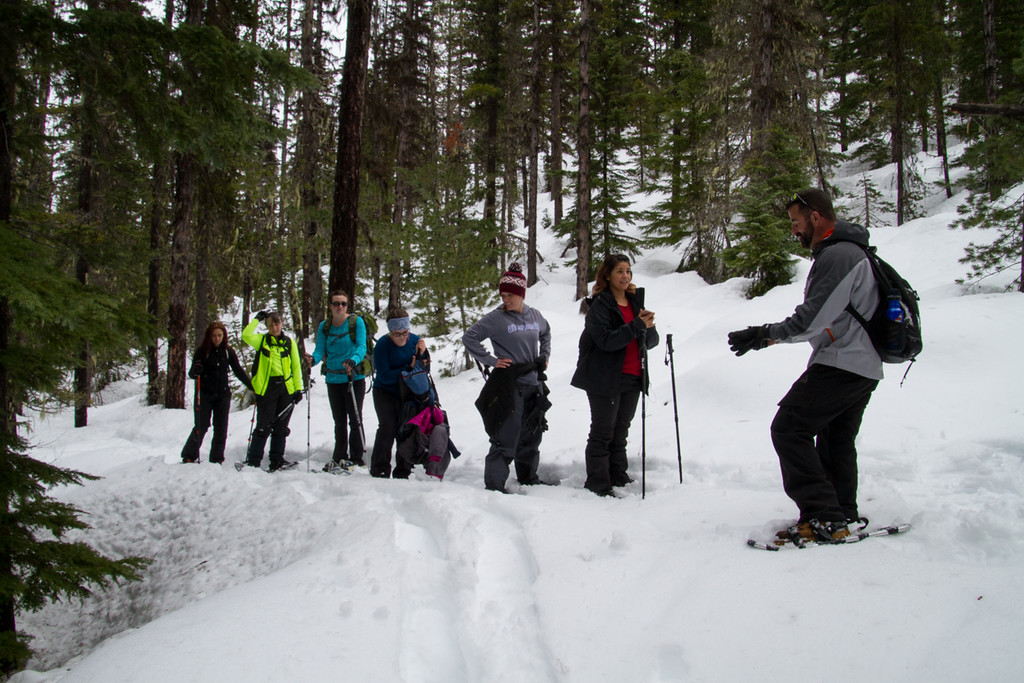 The Bron Yr Aur Hiking Club<br /> Snowshoeing in March<br /> Lodgepole Campground, Chinook Pass Hwy.