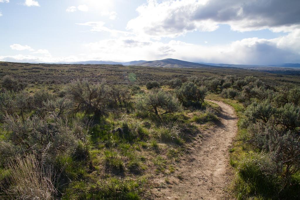 Cowiche Canyon Uplands Trails<br /> Yakima, Washington