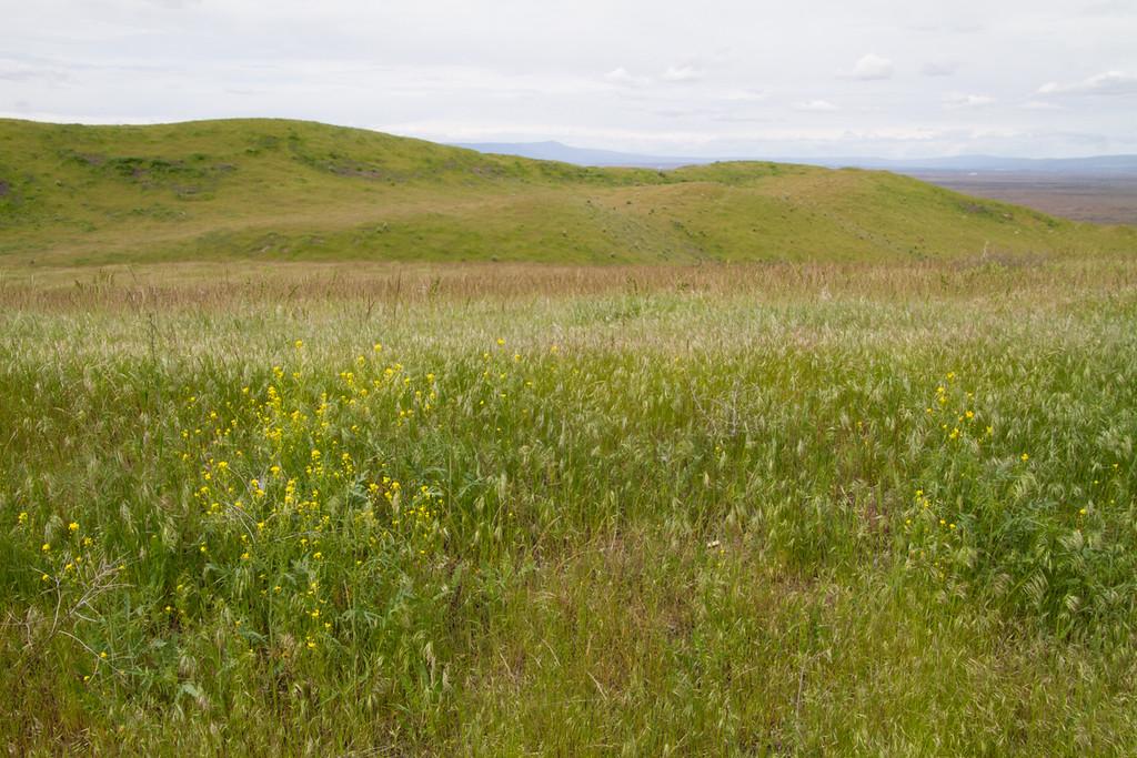 White Bluffs South<br /> Wahluke National Wildlife Refuge<br /> Washington