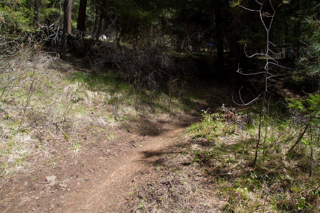 Edgar Rock Trail<br /> Chinook Pass Highway