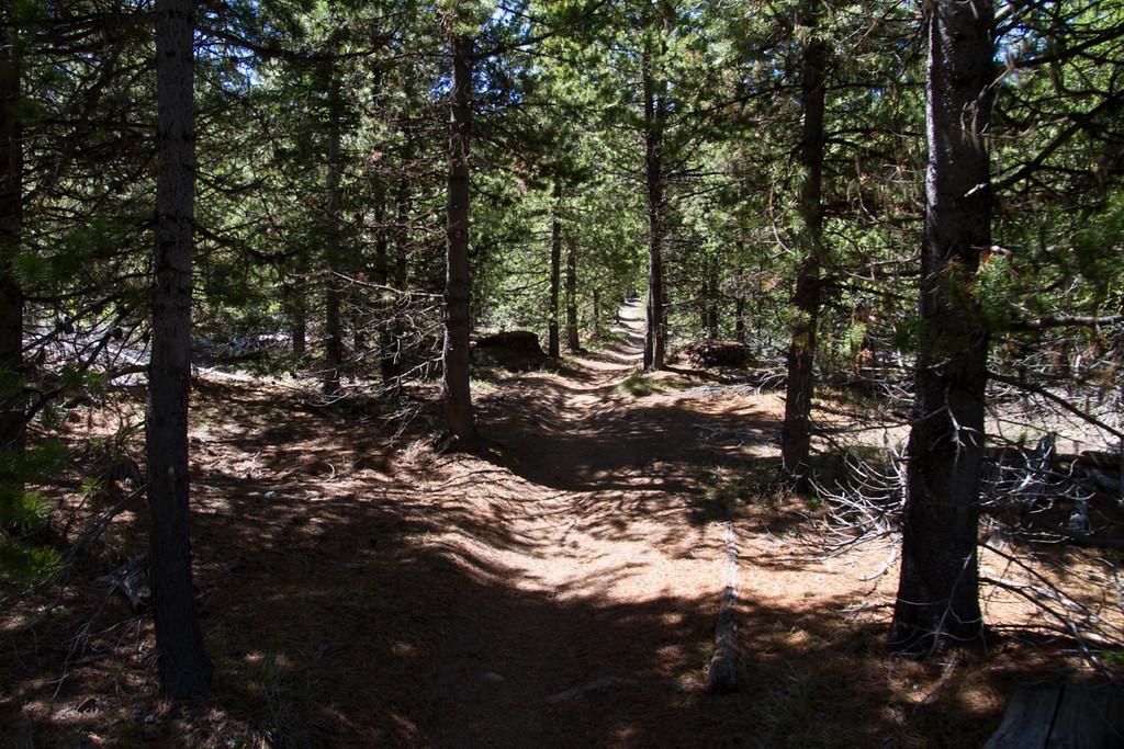 Manastash Lake Trail<br /> Manastash Ridge, WA