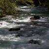Silver Falls Loop Trail<br /> Ohanapecosh, Mt. Rainier National Park