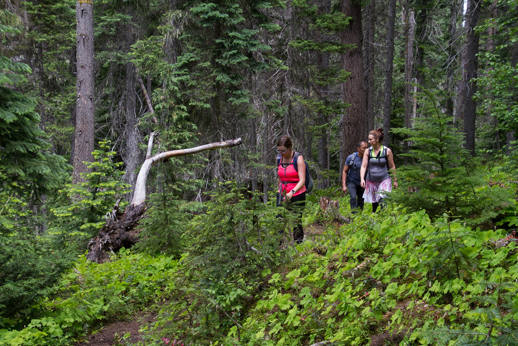 Dancing in the Wilderness Hike<br /> Pleasant Valley Lake Trail<br /> Chinook Pass Highway