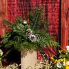 #14 Wooden Pallet Tall - Fresh Greens
