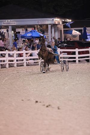 Devon Horse Show