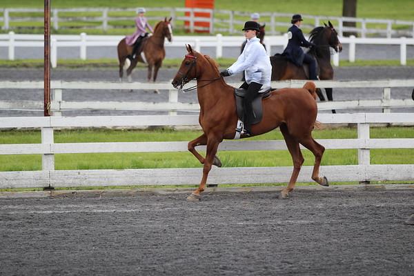 Caroline - Keystone Classic Horse Show