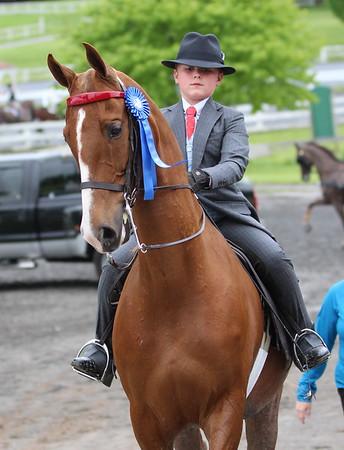 Patrick - Keystone Classic Horse Show