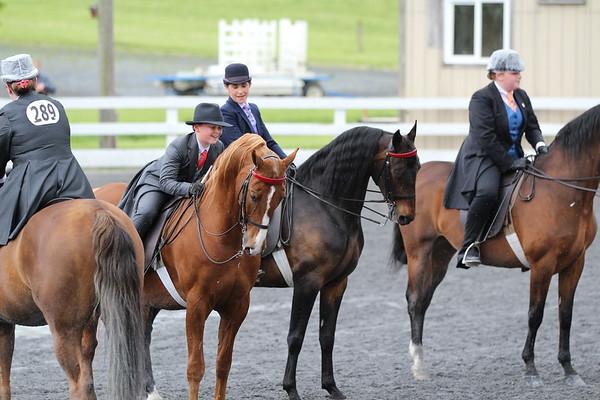 Shannon & Patrick - Keystone Classic Horse Show