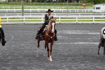 2017 Horse Show Season