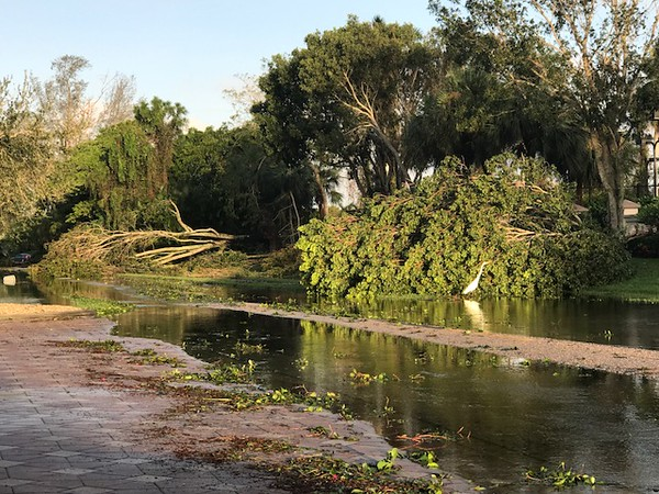 . Photo Courtesy Doug Spicer These images, provided by 1973 Oneida High School alumn Doug Spicer, show the aftermath of Hurricane Irma after it passed through Fort Myers, Florida, on Saturday and Sunday, Sept. 9-10, 2017.