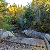 Irishtown Park Fall 05