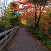 Irishtown Park Fall 12